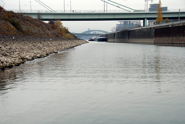 Der Rhein führt Niedrigwasser