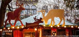Weihnachtsmarkt im Stadtgarten 2015