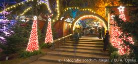 Weihnachtsmarkt im Stadtgarten 2016