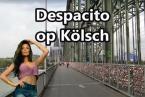 despacito-koelsch-800.jpg