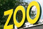 zoo-145.jpg