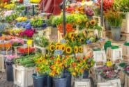 fruehlingsmarkt-2-pixabay-600.horizontal.jpg