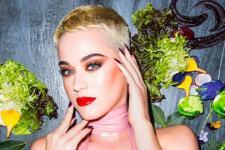 Katy-Perry---2017_565.jpg