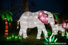 china-light2018_fm-_Elefanten_Quelle_uniteaser.jpg
