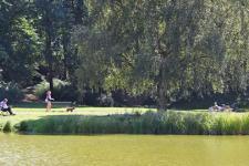 klettenbergpark01_565.jpg