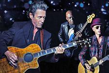 maffay2015_candy-back_red-rooster_225.jpg