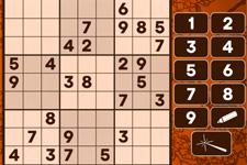 sudoku-225.jpg