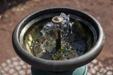 trinkwasserbrunnnen-imago93164915h.jpg