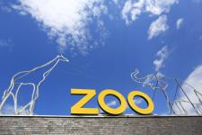 zoo_600.jpg