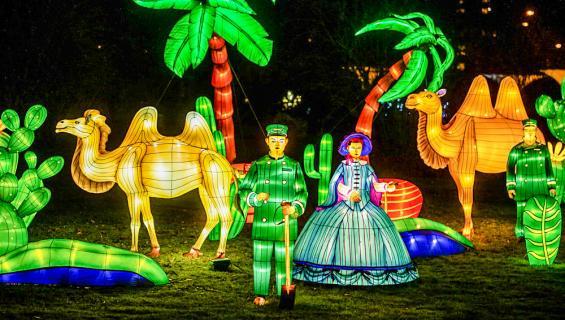 china-light_zoo2019_fm-100.jpg