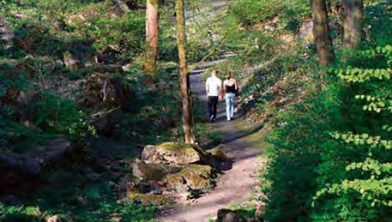felsengarten_bachem_500x333.jpg