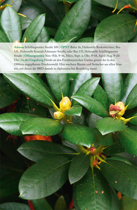 111 k lner orte die rhododendron schlucht. Black Bedroom Furniture Sets. Home Design Ideas