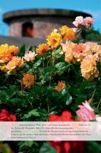 Eher Korallenriff als Blumenmeer: Der Rosengarten im Fort X (Foto: Britta Schmitz)