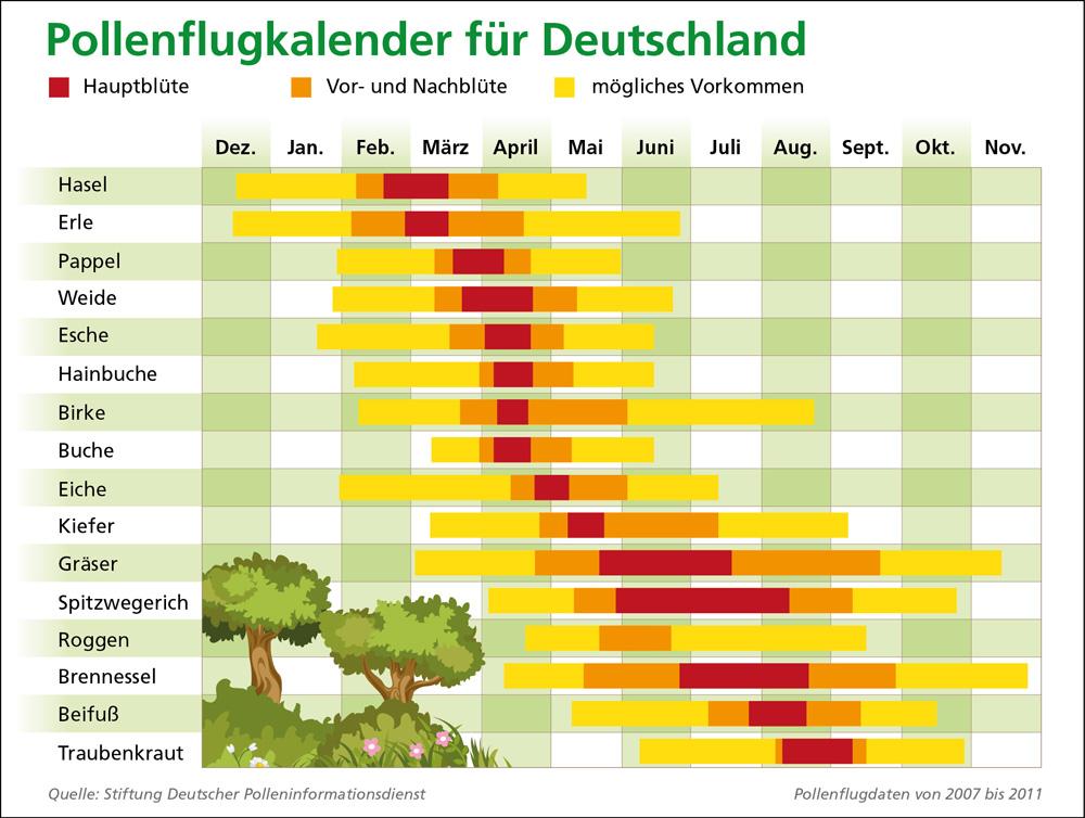 Pollenkalender Aktuell