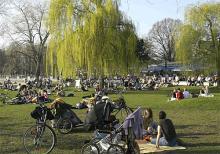 Sommer am Aachener Weiher. Foto: Bilderbuch-Koeln.de