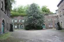 Fort X im Agnesviertel: Bekannt für seinen Rosengarten auf dem Dach.