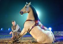 Die Pferde müssen sich den Haien beugen. (Foto: Apassionata GmbH)