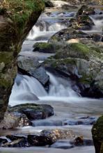 Miniaturwasserfälle der kleinen Kyll: Nur Plätschern unterbricht die Stille. (Foto: Eddi Meier)