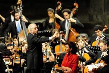 Daniel Barenboim dirigiert das West-Eastern Divan Orchestra. (Foto: dapd)