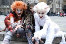 Die Katzen sind los: Jennyanydots, Grizabella und Victoria/White Cat fauchen auf der Domplatte. (Foto: Helmut Löwe)
