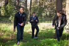 Nach einer Party machen die drei Jungs in einem nahe gelegenen Waldstück eine faszinierende Entdeckung. (Foto: Twentieth Century Fox)