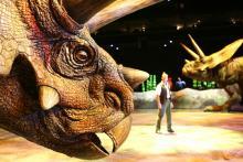 Dinosaurier in der Show Lebensgroß und lebensecht (Bild: mlk.com)