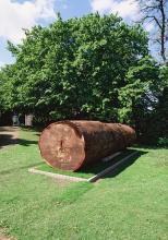 """Im Skulpturenpark zu sehen: Jimmie Durham, """"Pagliaccio non son """", 2011. VG Bild-Kunst, Bonn (Foto: Fotostudio Schaub)"""