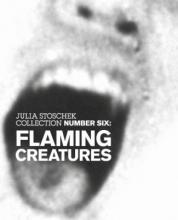"""""""Flaming Creatures"""" in der Galerie Stoschek."""