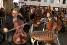 Das Café wird zum Streichorchester