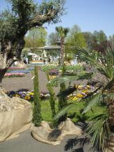 Blütenpracht bei der Home & Garden