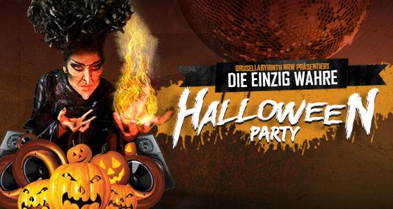 Single party heute nrw