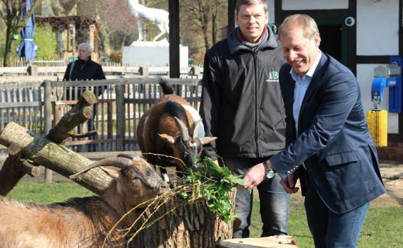 Kleine Geburtstagsfeier: Hennes VIII, Anneliese, Zoo-Vorsitzender Christopher Landsberger und FC-Präsident Markus Ritterbach (v.l.)