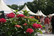 """Die """"Home & Garden"""" öffnet vom 28. April bis zum 1. Mai ihre Pforten im Kölner Rheinpark. (Foto: Home & Garden)"""