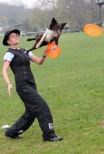 Ninja mit Frauchen Marion Hussong-Albers: jagd mit hohen Sprüngen Frisbeescheiben hinterher. (Foto: Helmut Löwe)