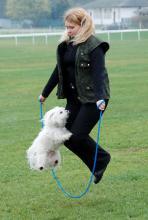 Malteser Pepper spring Seil wie jeck: ob Frauchen da mitkommt? (Foto: Helmut Löwe)