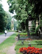 Die Millionenallee an der Ost-West-Achse des Melatenfriedhofs (Foto: Britta Schmitz)