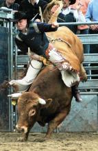 Bull-Riding beim Kölner Rodeo- und Country-Wochenende