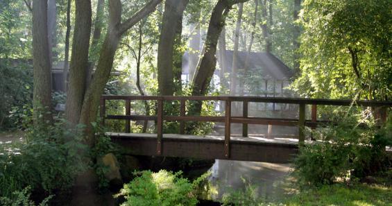 Unterwegs auf der Sauerland-Waldroute Naturpark Arnsberger Wald