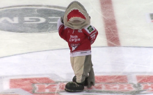 Sharky das tanzende Maskottchen der Kölner Haie. (Screenshot: Youtube-Video)