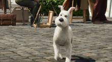 Der Terrier Struppi ist Tim auch im Film ein treuer Weggefährte. (Credit: Sony Pictures)