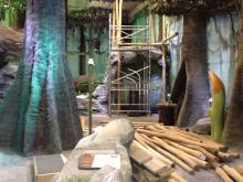 Der Umbau des Odysseums kostet die Betreiber zwei Millionen Euro. (Foto: Viola Niedenhoff)