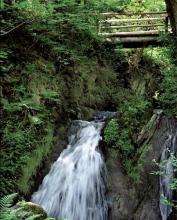 Wasserfall im Enderttal (Foto: Rüffer/Rüffer-Lukowicz)