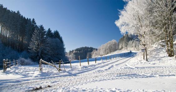 Foto: Sauerland-Tourismus e. V.