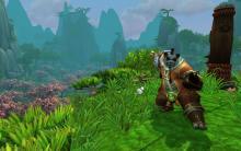 """""""Pandaren Monk"""" im Jade Forest (Foto: Blizzard)"""