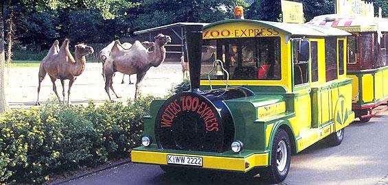 Vom Zoo Zum Dom Mit Dem Zoo Express Koelnde