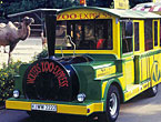 Zoo-Express145.jpg