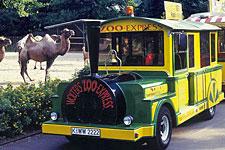 Zoo-Express225.jpg
