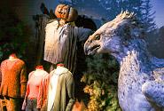 Bildergalerie: Die magische Welt des Harry Potter in Köln