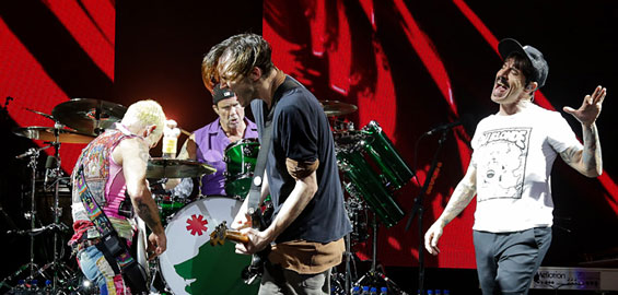 red hot chili peppers gitarrist